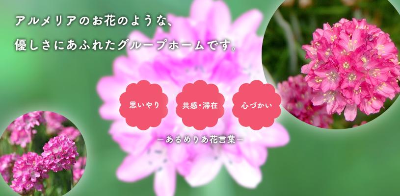アルメリアのお花のような、優しさにあふれたグループホームです。